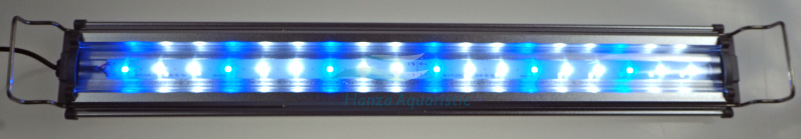 SL600-1LED-1.jpg